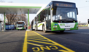 In Ungheria trasporti pubblici verdi